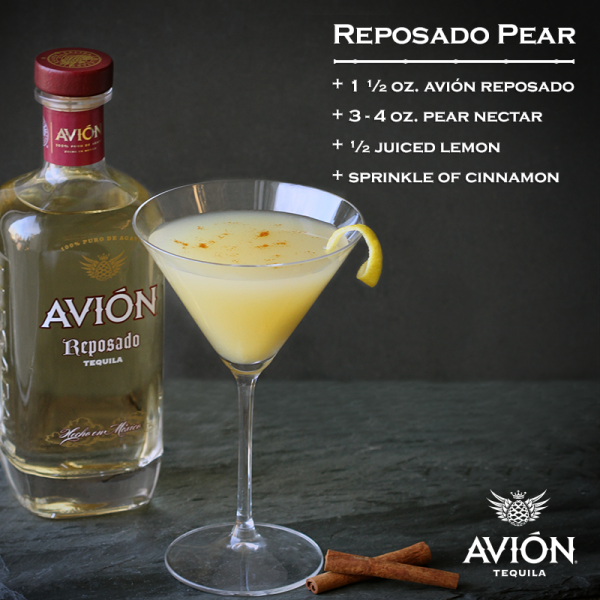 Avion tequila drink recipes besto blog for Best tequila shot recipes