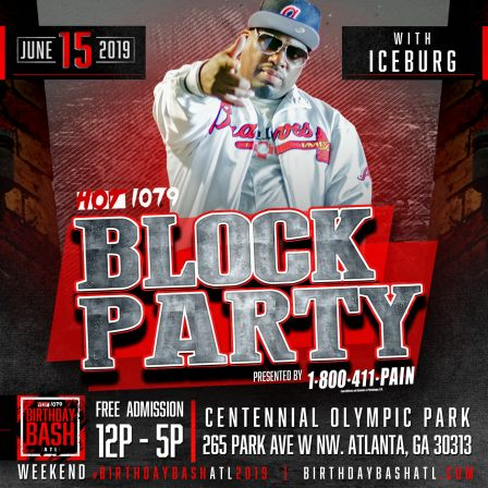 Birthday Bash: Block Party Paid Artist